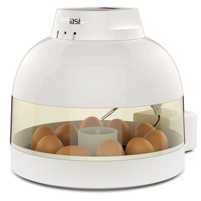 孵卵器うずらおすすめ!リトルママ超えの激安自動孵卵器とは?